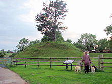220px-Trellech_-_Tump_Terret_Castle_Mound_-_geograph_org_uk_-_473817